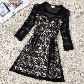 Slim Lace Perspective Dress